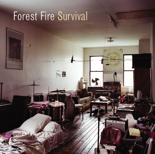 visuel-forest-fire-survival